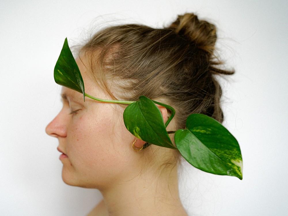 Beitragsbild Pflanzen im Kopf